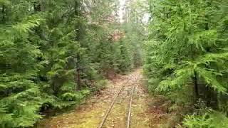 preview picture of video 'Trasa wąskotorowej kolei leśnej Czarna Białostocka Autumn narrow gauge rail poland'