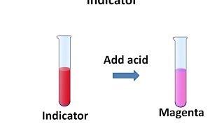 CH04-ACIDS, BASES AND SALTS-PART11-INDICATORS