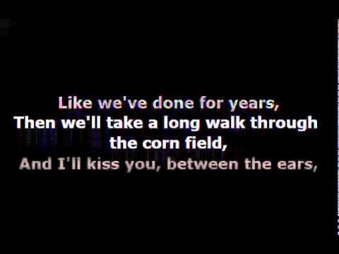 Owl City - The Bird and the Worm with Lyrics