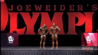 Finals Of The 2015 Mr.Olympia