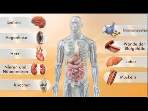 Anfängliche Änderung in der Prostatadrüse