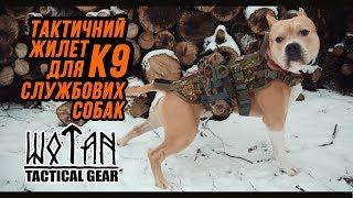 К9 тактический жилет для собаки от компании Военное тактическое снаряжение Вотан - видео