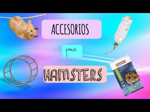 Accesorios para Hamsters--Hamster Maniacs--