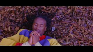 Jah Prayzah - Hokoyo (Official Music Video)