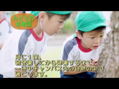 Narabunkajoshitankidaigakufuzoku Kindergarten
