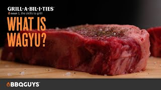What is Wagyu Beef? | How to Grill with Grillabilities from BBQGuys