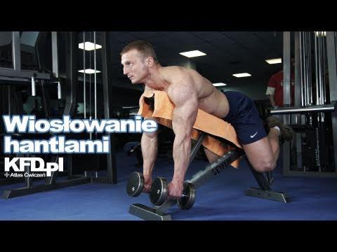 Koło ćwiczenia dla niektórych grup mięśni