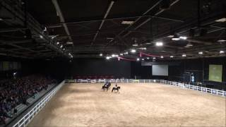 2016 Equidays ANZFHS Friesian Quadrille
