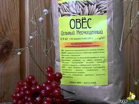 Кодировка от алкоголя в нижегородской области