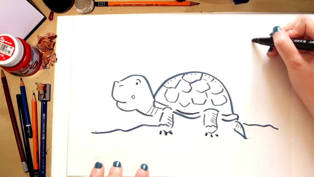 Como desenhar uma Tartaruga - desenhos para crianças