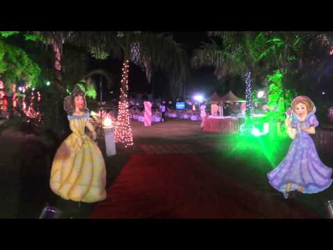 BARBIE / THEME/ BIRTH DAY PARTY  RAIGARH EVENT COMPANY & WEDDDING PLANNER 09826181112