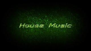 Benny Benassi Style Electro House Instrumental 2017