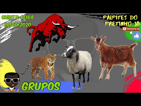 PALPITES JOGO DO BICHO 28/05/2020 PRETINHO JB