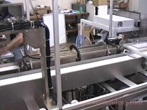 Blister Pack Collator Machine System Cartoner Systems