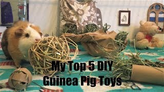 How To Make Your Own Toys For Your Guinea Pigs