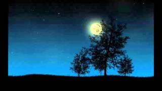 Rachmaninoff - Preludes Op.  23
