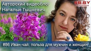 Иван-чай: польза для мужчин и женщин