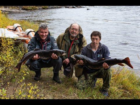 Водный поход с Большого Токо. Рыбалка на тайменя