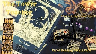 The Tower Teacher: What Is Dying in Your World? |Tarot Reading | Pick a Card