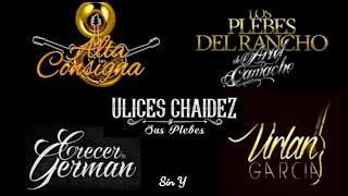 Mix Alta Consigna, Los Plebes Del Rancho, Virlan Garcia, Etc. Vol. 2