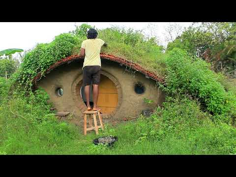 Tomato and chilli planting I Hobbit house