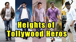 Heights of Tollywood Heroes