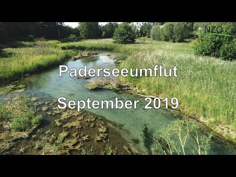 Paderseeumflut - wichtiger Beitrag zur Biodiversität in Paderborn