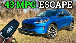 Is the 2020 Ford Escape Hybrid FINALLY a Great RAV4 Hybrid Competitor?