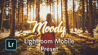 lightroom mobile presets free видео Смотреть видео