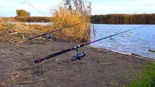 Рыбалка на пруду в ноябре