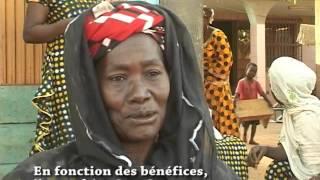 Autre Terre et le Baobab présentent le micro-crédit solidaire de Wayalghin. (#015)