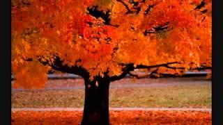 Вивальди-Четвертый сезон(Vivaldi-Four Seasons)