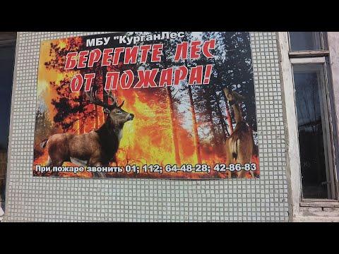 """Противопожарные мероприятия МБУ """"Курганлес"""""""