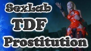 SLab TDF Prostitution in Skyrim - полный трэш