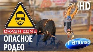Как прокатиться на огромном быке.   CRASH ZONE + Галилео  