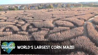 World's Largest Corn Maze!   Kholo.pk