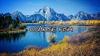 COARSE FISH  - Fly Fishing Film Part 1