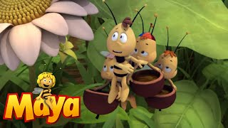 Solar Queen - Maya the Bee - Episode 43