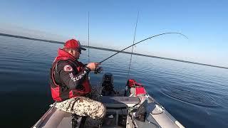 Отчеты о рыбалке на яузском водохранилище 2019