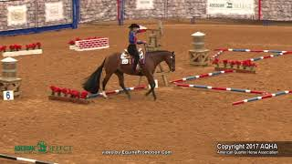 A Judge's Perspective: 2017 AQHA Select Trail World Champion