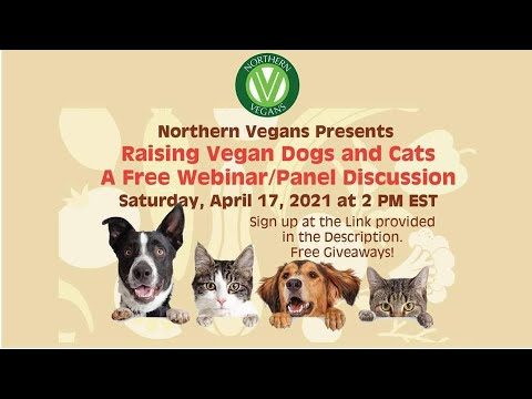 Raising Vegan Dogs and Cats - YouTube