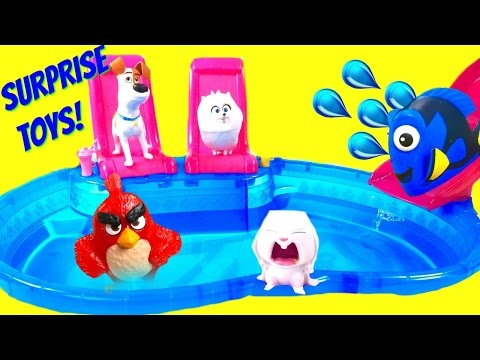 The Secret Life of Pets Dive for Blind Bag Toy Surprises at Pool! Dory & Angry Birds!