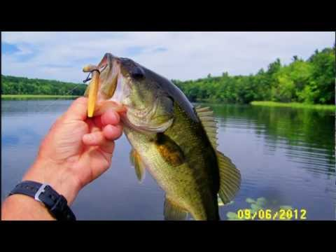 Bass Fishing – Nj. and Maine Pleasant Pond Gardiner/Richmond, Me.