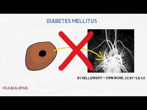 ¿Cómo pueden los diabéticos galletas