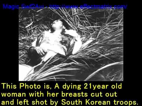ライタイハン, 韓国のベトナム戦争 The demon behavior of the Korean army during the Vietnam War.