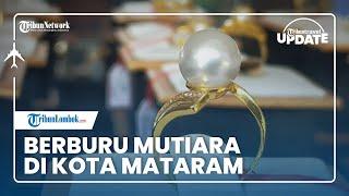 TRIBUN TRAVEL UPDATE: Berburu Mutiara di Sekarbela Kota Mataram