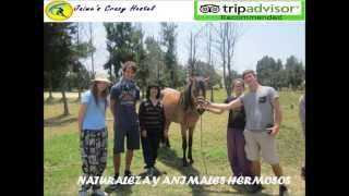 preview picture of video 'Hostal  jaime Crazy Huarmey Peru Alojamiento Hostel.'