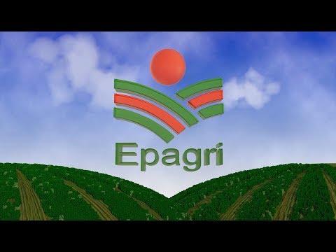 Vídeo Institucional Epagri