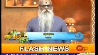 Gemini News Naatuvaidyam