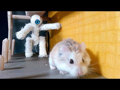 Prepare-se para uma aventura do Major Hamster